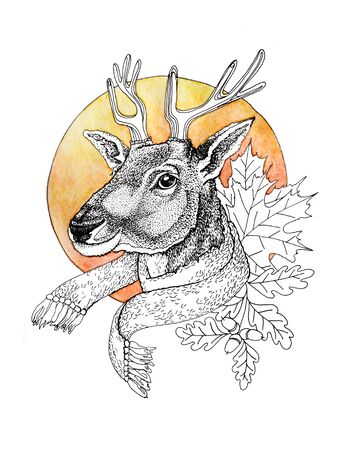 The head of a young handsome stately proud deer in a scarf against the backdrop of the setting autumn orange sun. Graphic drawing of a forest animal on a watercolor background. 写真素材