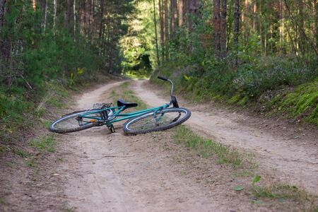 An old vintage bike lies on a sandy forest path in the midst of tall trees and lush bushes. Banco de Imagens