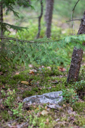 A plastic bottle lies in the middle of the forest. Contamination of the environment with human waste. 免版税图像