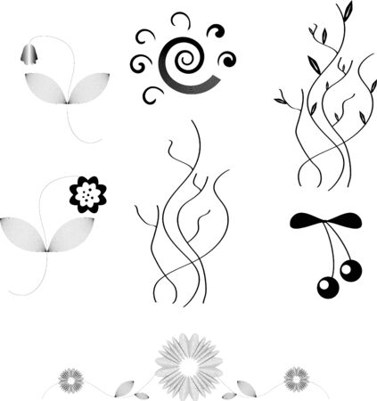 vector design elements of flowers isolated on white photo