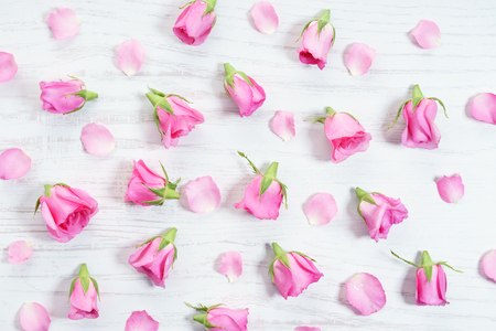 pink roses and petals on white wooden background