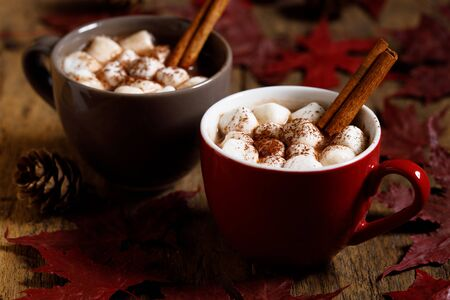 Hot cocoa with marshmallow in a ceramic cups on rustic wooden table and maple leaves. Stock Photo
