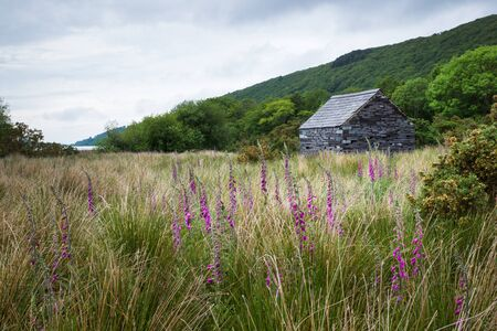 slate roof: Stone cabin with slate roof in meadow. Flowers in foreground, lake and mountain in background