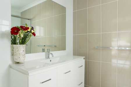 ensuite: New compact ensuite bathroom with tiled walls and vanity Stock Photo
