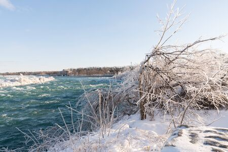 Ice covered trees and snow at Niagara Falls, Canada 스톡 콘텐츠