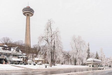 Frozen trees in Queen Victoria Park, Niagara Falls with Skylon Tower in background 스톡 콘텐츠