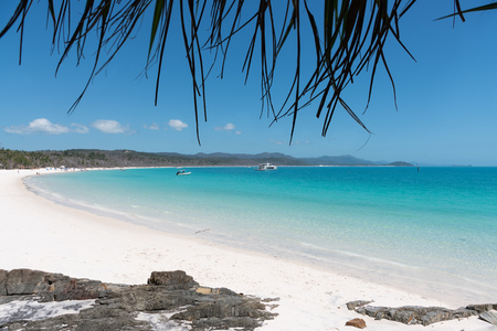 Beautiful white beach and turquoise water of Whitehaven Beach in The Whitsundays 写真素材