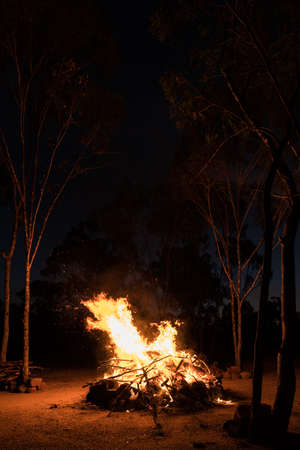 Camp fire burning at night in Australian outback with gum trees (eucalyptus trees) around Archivio Fotografico