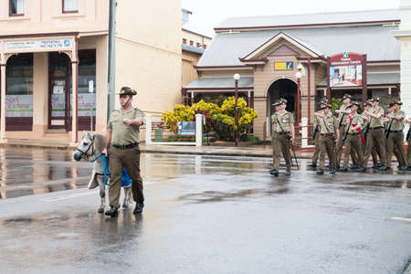 Charters Towers, Australia - April 25, 2019: Shetland pony mascot Septimus Quintus or Seppie leads the Anzac Day march in the rain