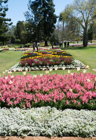 Toowoomba, Australia - September 20, 2018: Beautiful gardens and floral display in Queens Park during Toowoomba's Carnival of Flowers