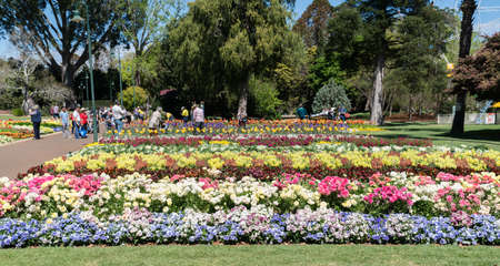 Toowoomba, Australia - September 20, 2018: Visitors enjoying the beautiful floral garden displays in Queens Park during the Carnival of Flowers in Toowoomba, the Garden City Editoriali