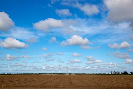 Fluffy white cotton wool clouds float in the blue sky above a ploughed field in the springtime in Canterbury, New Zealand