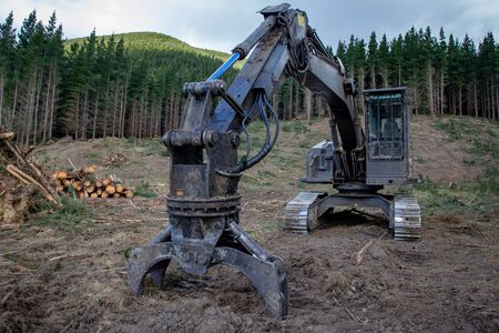Heavy machinery used to lift logs out of the forest and onto trucks on a forestry logging site in Canterbury, New Zealand