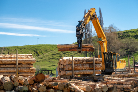 Logging machines load up a truck with logs at a forestry site Archivio Fotografico