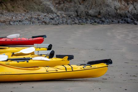 Flea Bay, Banks Peninsula, New Zealand - January 6 2019: Kayaks on the beach ready for tourists to go on a wildlife experience