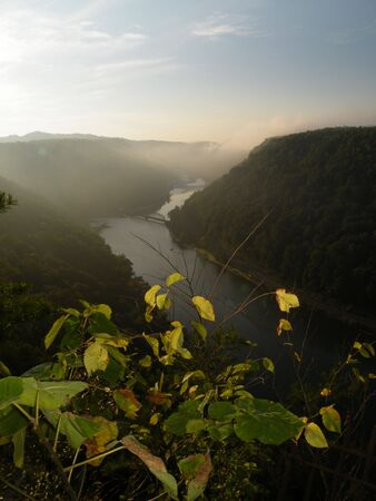 forground: New River Gorge photo taken in early morning with leaves in forground
