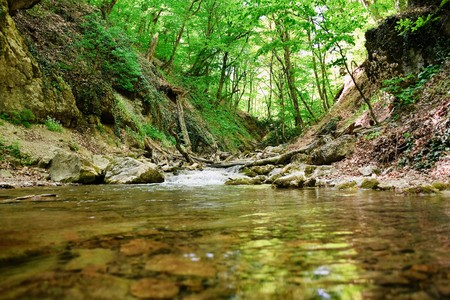 murmur: cold mountain creek in the Crimean moutains Stock Photo