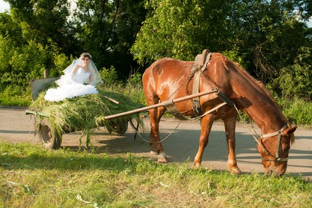 Young beautiful bride in the old carriage with hay