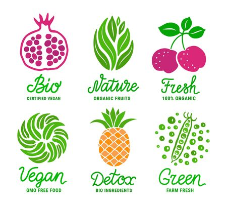 Healthy fruit and vegetable colourful sticker set. Green, Nature, Bio, Fresh, Vegan, Detox lettering inscription. Natural product concept. EPS 10 vector illustration Illustration