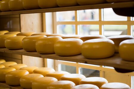 Cheese wheels on a shelf