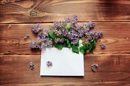 branches of a blossoming lilac on a wooden background Standard-Bild - 124652743