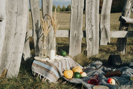 pumpkins in autumn on the grass on nature against the background of a wooden fence