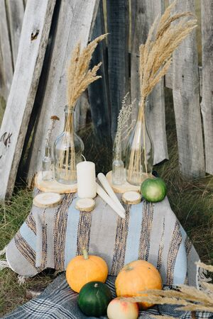 pumpkins in autumn on the grass on nature against the background of a wooden fence Фото со стока - 131491892
