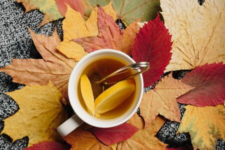 tea with lemon on a background of autumn leaves