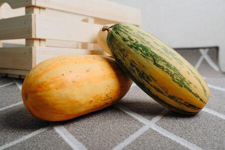 yellow long zucchini on background