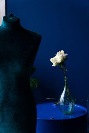 white flower in a glass bottle on a blue background Фото со стока - 132896200