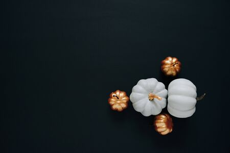 white small pumpkins on a black background