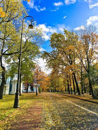 beautiful autumn landscape in Sunny weather o Фото со стока - 136199128