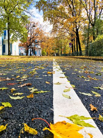 beautiful autumn landscape in Sunny weather o Фото со стока - 136199310