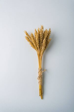bouquet of yellow rye on a white background