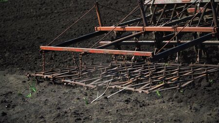 The tractor cultivates and cuts furrows in the field. Tractor work in the black soil field in the village Stock Photo