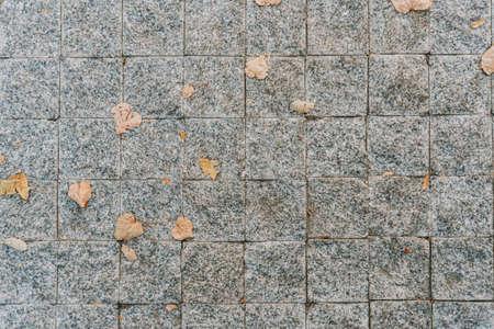 Grey stone pavement texture. Paving stones with yellow autumn leaves Фото со стока