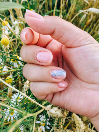 Girl's hands on the background of a wheat field Standard-Bild