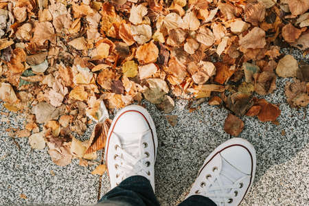 feet of a girl in jeans and white sneakers on the pavement with yellow autumn leaves