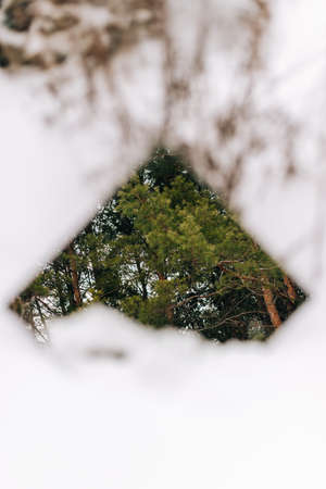 A mirror in the snow with a reflection of a fir tree