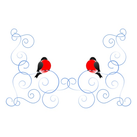 Bullfinch and a winter pattern  A frame  A vector illustration  Stock Vector - 13106036