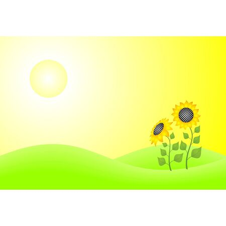Two sunflowers on the green lawn Vector