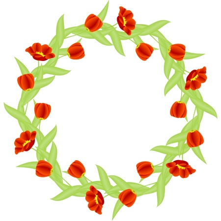 frame shape up circle with red tulips isolated on white background Stock Vector - 13964415