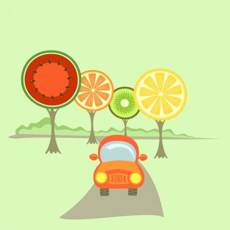 orange trees: An orange car between fruit-like trees