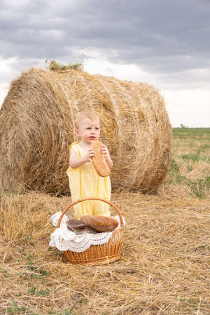 toddler boy blond stands in a field with a haystack eating a baguette. Banque d'images
