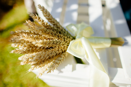 wheat grass: bouquet of spikelets of wheat with green grass background Stock Photo
