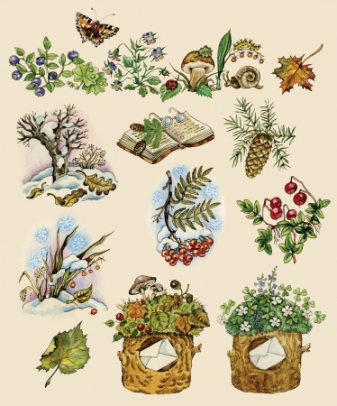 Forest set of natural images painted in vintage manner  Objects isolated on buff background