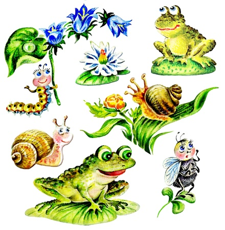 Snails, frogs, Caterpillar with flower, fly, water lily. Set of hand drawn cartoon animals. photo