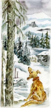Homeless lonely dog sitting by fir tree against northern winter landscape with forests and snow covered hills  photo