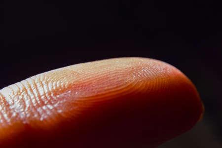 macro closeup view of finger print