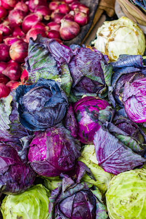 heap of violet purple cabbage in retail vegetable super market for sale Stock Photo